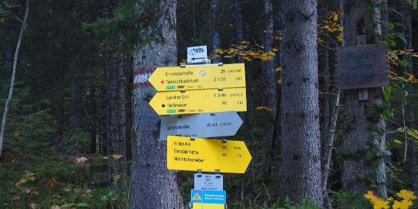 834m Kroisn, Wanderweg Ennstalerhütte