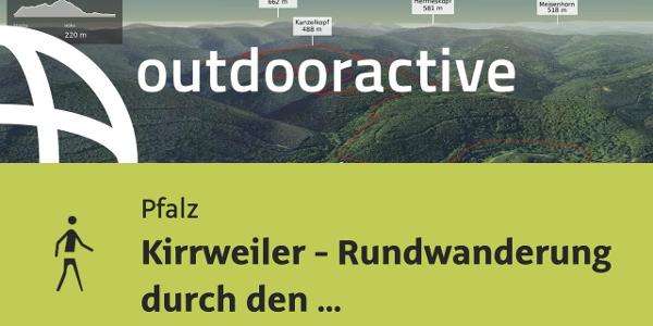 Wanderung in der Pfalz: Kirrweiler - Rundwanderung durch den Kirrweilerer Hinterwald