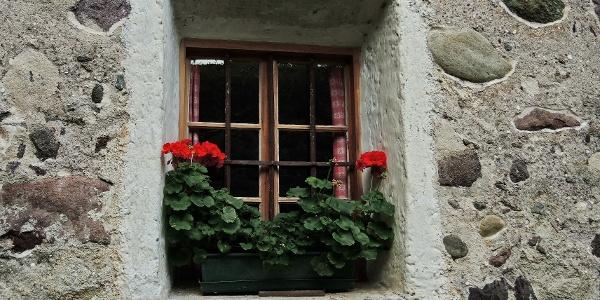 Gepflegter Fensterschmuck