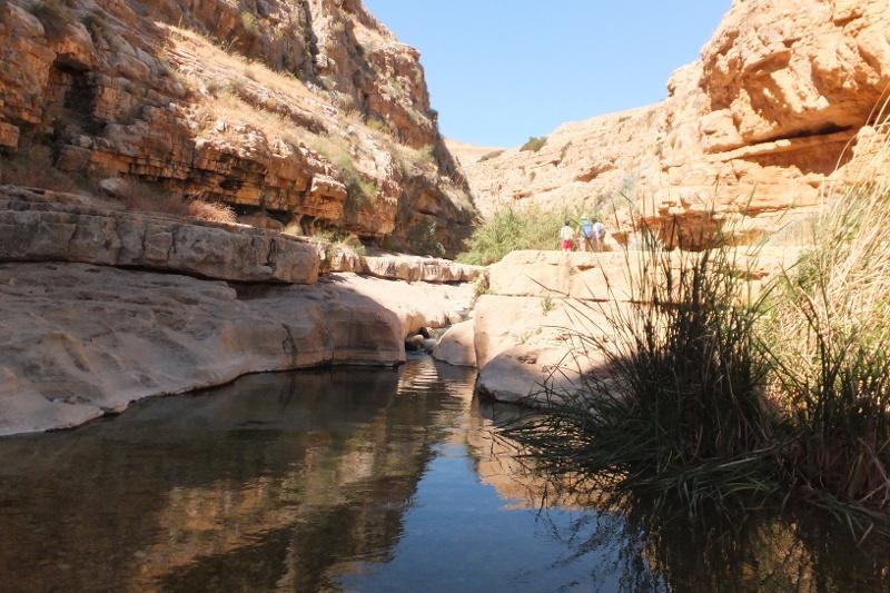 Kleine Gumpen im Wadi Qelt laden zum Baden ein.