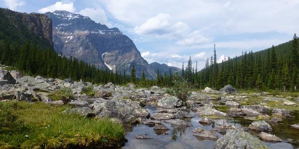 An den Consolation Lakes