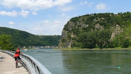 Rheinradweg gegenüber der Loreley