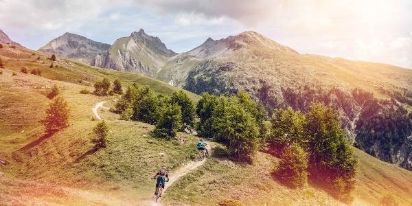 Mountainbiker auf dem Torrenttrail