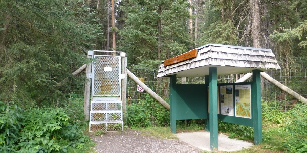 Trailhead des Bourgeau Lake Trails.