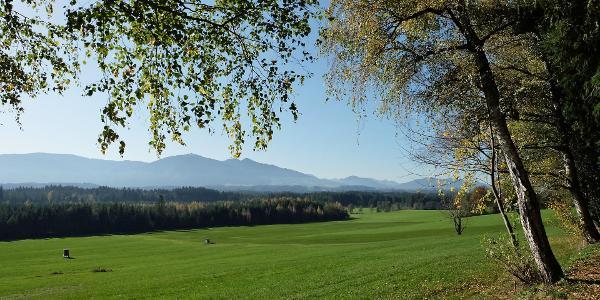 Blick ins Ammergebirge, vorne die Hörner