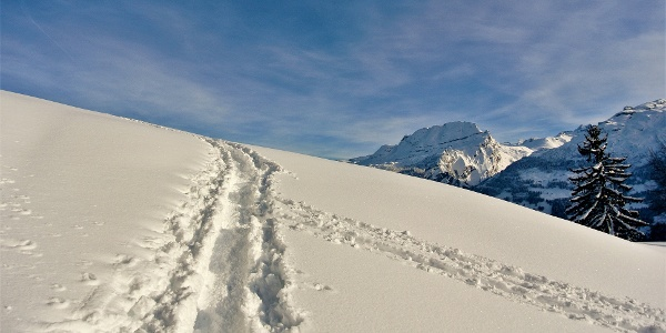 Skitour Muotathal