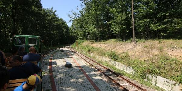 Transzbörzsönyi kisvasút (Vetettfű megállóhely)