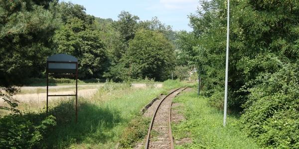Transzbörzsönyi kisvasút (Malomvölgy megállóhely)
