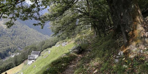 Sentiero etnografico Revöira