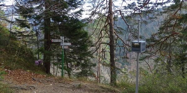 Abzweig vom Kalvarienberg hinunter zum Schwansee