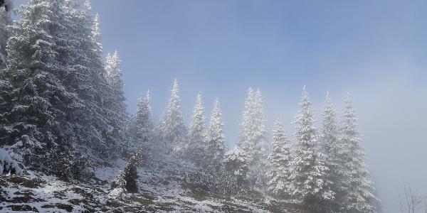 Nebel und blauer Himmel
