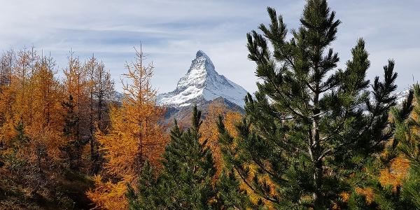 Vue depuis le chemin de randonnée sur le Matterhorn