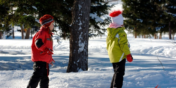 This skiing area is ideal for beginners, in particular children, numerous blue slopes