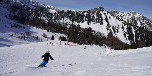 Ski Area Moena-Alpe Lusia
