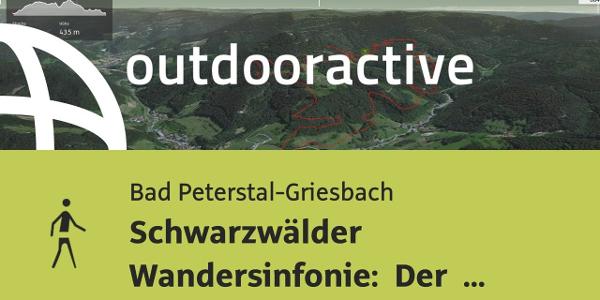 Wanderung in Bad Peterstal-Griesbach: Schwarzwälder Wandersinfonie: Der ...