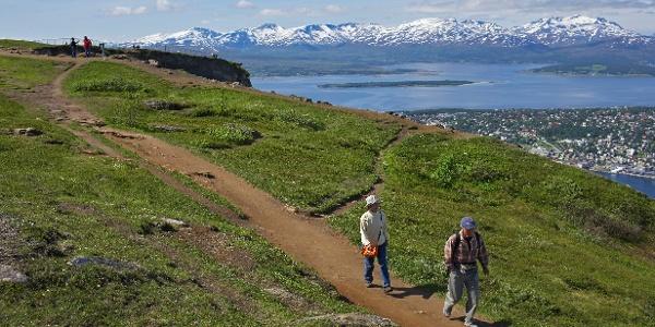 Trail to Fløya