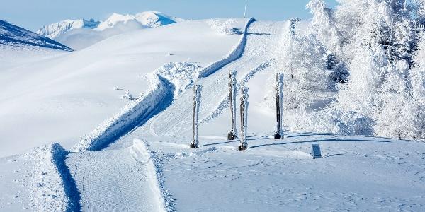 Winterwandern in Feldis