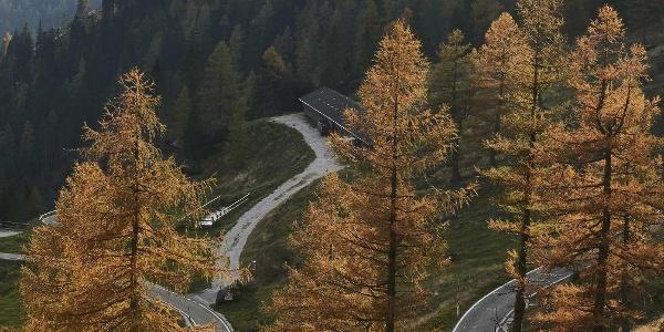 Tornante salita Passo Manghen
