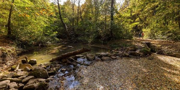 A Gaja-szurdok és a benne kanyargó Gaja-patak ősszel