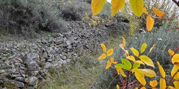 Der alte Verbindungsweg, dem die mittelalterlichen Brücken am Treis Elies Nature Trail dienen