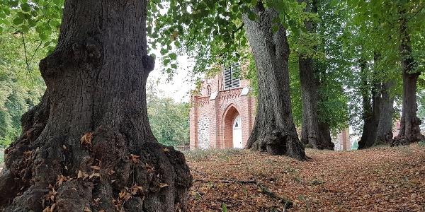 Linden vor der Raduhner Kirche