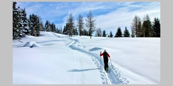 Giro del monte Cogne