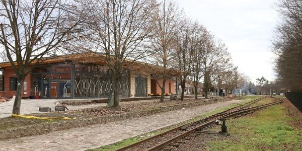Pálházi Erdei Vasút (Pálháza állomás)