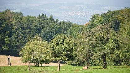 Aussichtspunkt auf dem Achenberg