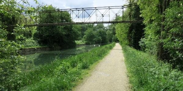 Rhein-Rhône-Kanal ziwschen Neu-Breisach und Artzenheim