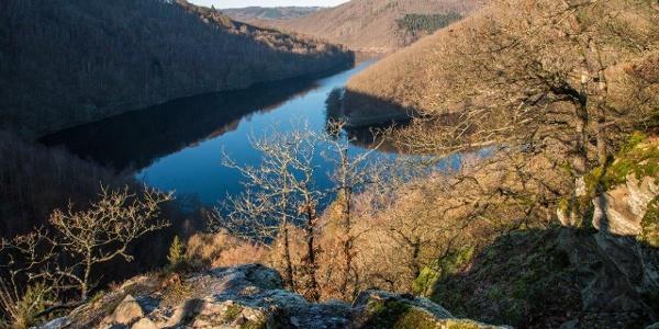 Diese abwechslungsreiche Wanderung (16,4 km; 354 hm) führt in die Rureifel: Von schroffen Felsvorsprüngen präsentieren sich Rurtalsperre-Obersee …