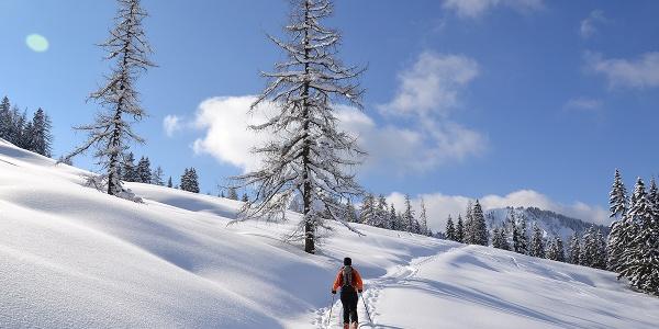 Skitour zum Loosbühel