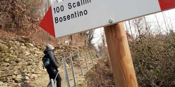Sentiero 100 Scalini