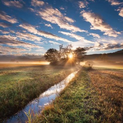 Sonnenaufgang im Ruggeller Riet