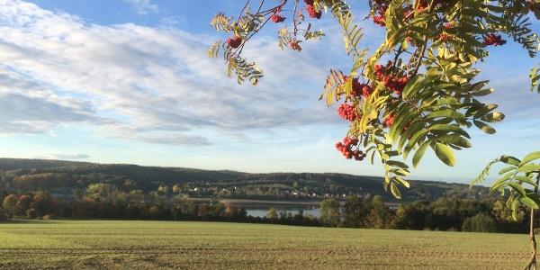 Aus der Ferne hat man an einem Herbsttag die Aussicht auf den Möhnesee