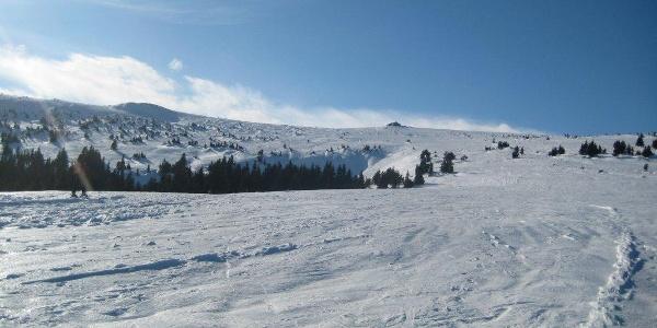 Hochwechsel: Typische Schneelage am Weg zum Gipfel