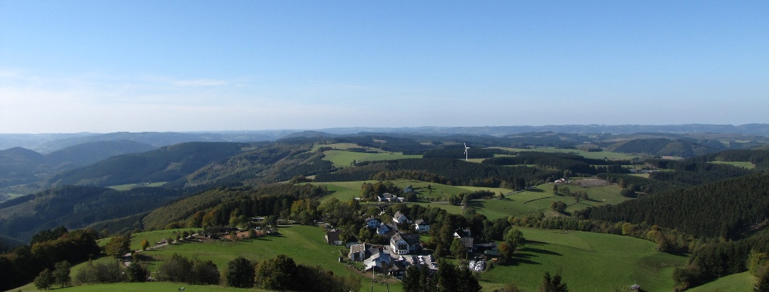 Ausblick vom Schombergturm über Wildewiese