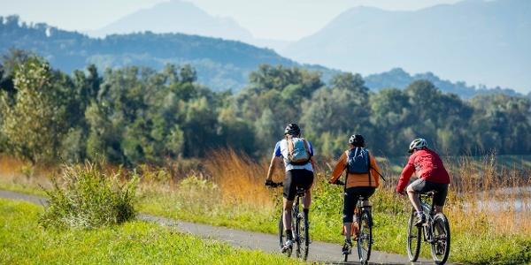 Radfahren auf dem Rheindamm in Ruggell