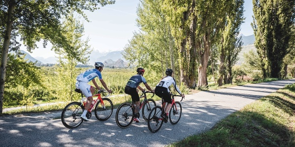 Professional cyclist Steve Morabito with friends on the road in the Rhone valley shortly before Sion.