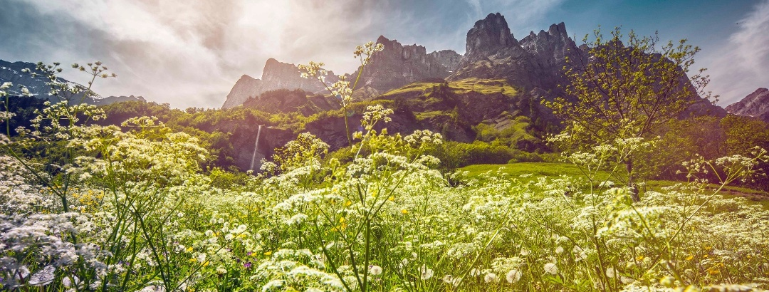 Leukerbad mit Wiese und Bergen