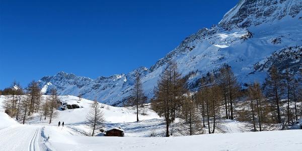 Winterwanderweg unterhalb der Fafleralp.