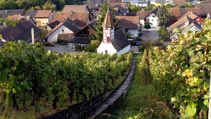 Dachsen Village
