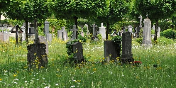 Der alte Friedhof Laufen