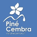 Profile picture of Responsabile A.p.T Piné Cembra SS