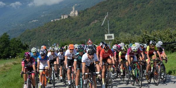 Coppa Rosa Gran Premio dei Direttori Sportivi