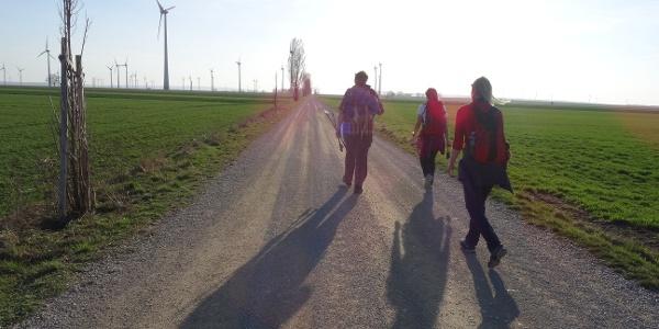 Wandergruppe am Jakobsweg