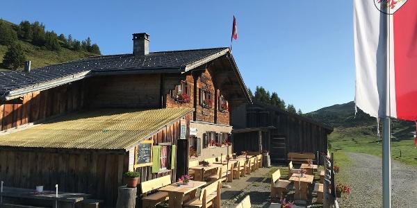 Alp dil Plaun