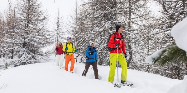Snowshoe trail in Sils