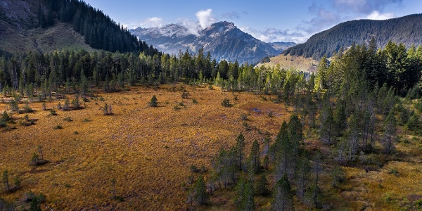 Wilde Moorlandschaft mit Aussicht auf die Entlebucher Bergwelt