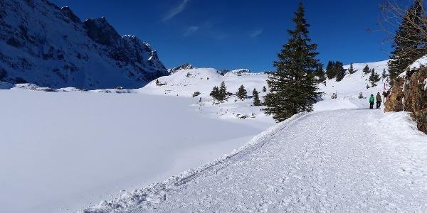 Der Winterwanderweg am Trübsee.