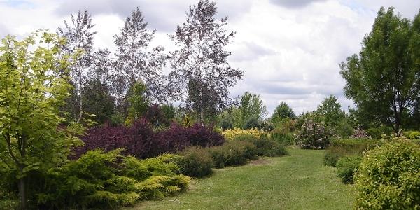 Bihar Arborétum